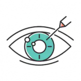 myopia 2